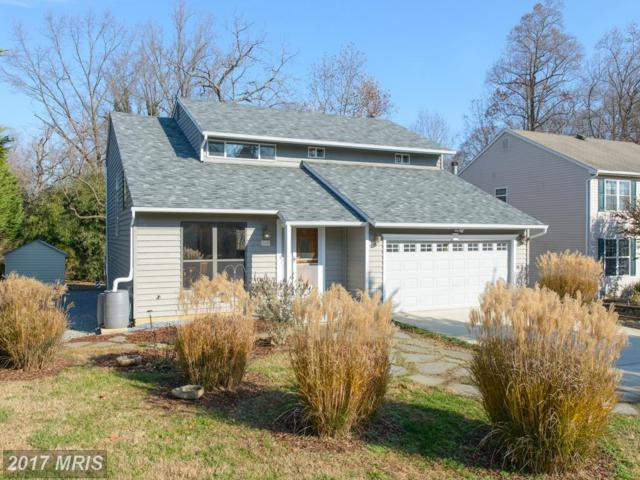 504 Southview Drive, Riva, MD 21140 (#AA10114714) :: Pearson Smith Realty
