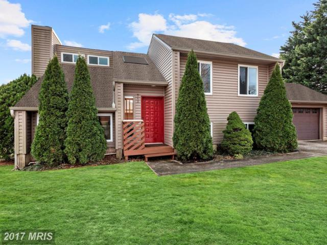 749 Darlow Drive, Annapolis, MD 21409 (#AA10116586) :: The Sebeck Team of RE/MAX Preferred