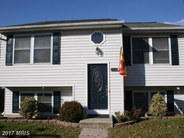 766 210TH Street, Pasadena, MD 21122 (#AA10117818) :: The Sebeck Team of RE/MAX Preferred