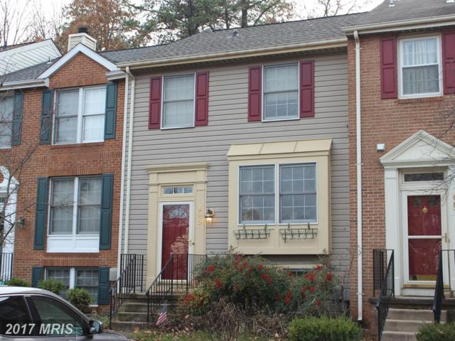 895 Chestnutview Court, Chestnut Hill Cove, MD 21226 (#AA10118248) :: The Bob & Ronna Group
