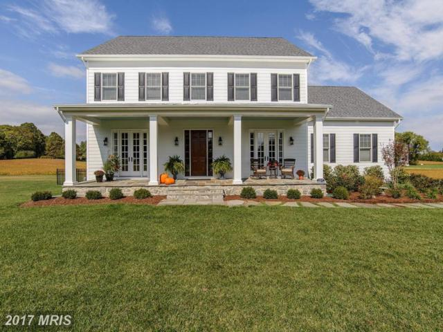 626 Doyle Road, Deale, MD 20751 (#AA10121277) :: Pearson Smith Realty