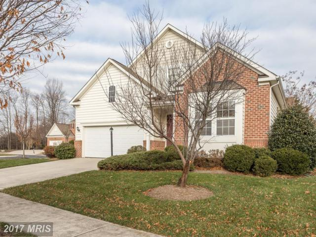 1616 Sloop Drive, Annapolis, MD 21409 (#AA10122264) :: Pearson Smith Realty