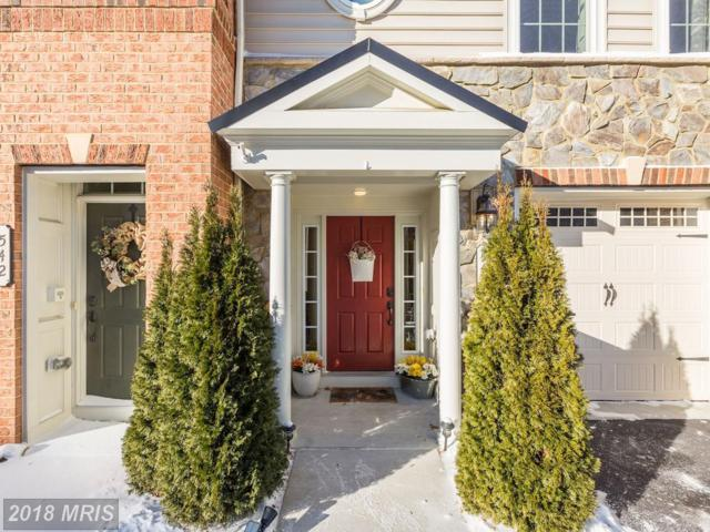 544 Deep Creek View, Annapolis, MD 21409 (#AA10126221) :: Pearson Smith Realty