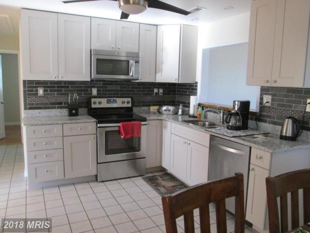 1930 Arundel Road, Pasadena, MD 21122 (#AA10127508) :: The Gus Anthony Team