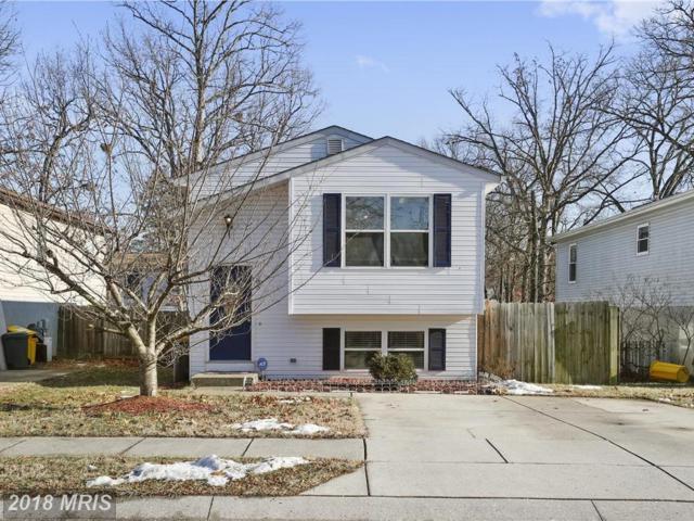 505 Glen Heights Avenue, Glen Burnie, MD 21061 (#AA10133198) :: Pearson Smith Realty