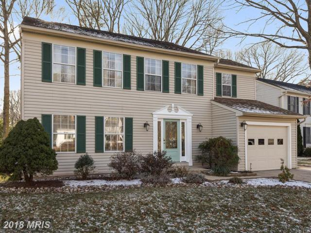 259 Lower Magothy Beach Road, Severna Park, MD 21146 (#AA10133221) :: Pearson Smith Realty