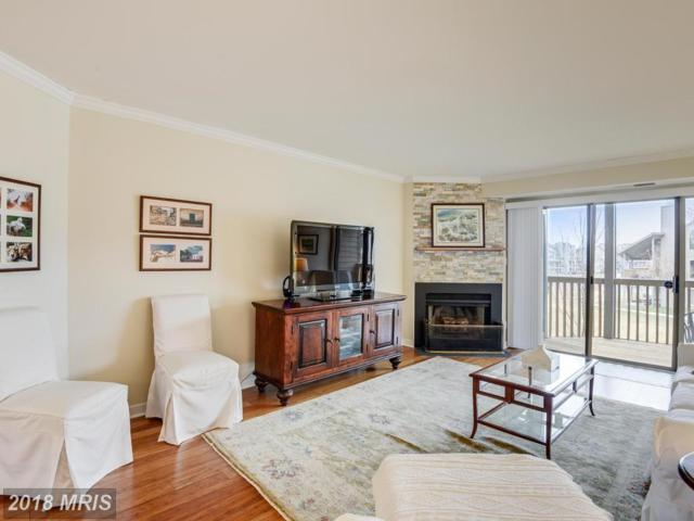 7004 Channel Village Court #101, Annapolis, MD 21403 (#AA10133650) :: Pearson Smith Realty