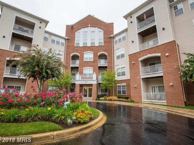 2610 Chapel Lake Drive #407, Gambrills, MD 21054 (#AA10136959) :: The Riffle Group of Keller Williams Select Realtors