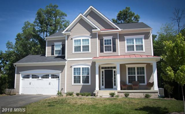 2011 Basil Hall Court, Gambrills, MD 21054 (#AA10138341) :: Pearson Smith Realty