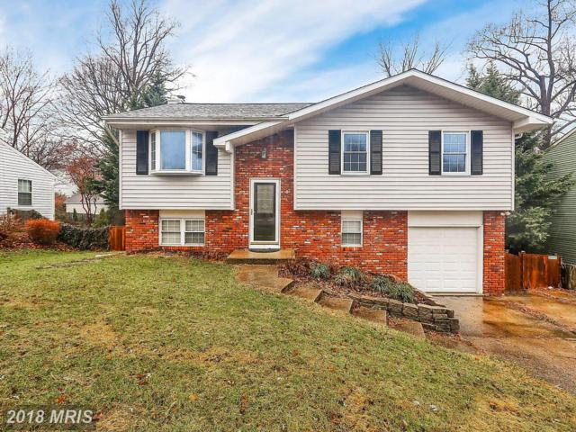 342 Ternwing Drive, Arnold, MD 21012 (#AA10140543) :: Charis Realty Group