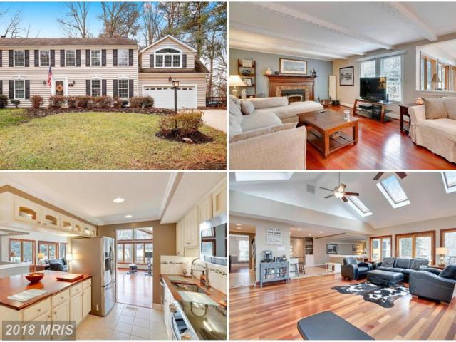 628 Bay Green Drive, Arnold, MD 21012 (#AA10144656) :: Blackwell Real Estate