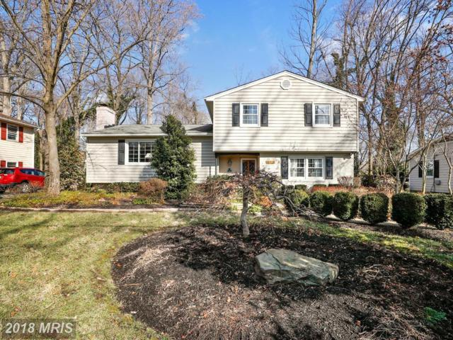 508 Bayberry Drive, Severna Park, MD 21146 (#AA10149585) :: The Bob & Ronna Group