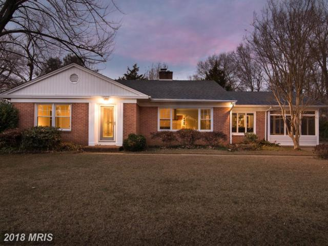 114 Lee Drive, Annapolis, MD 21403 (#AA10149644) :: Keller Williams Pat Hiban Real Estate Group