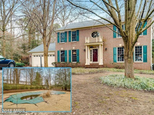 507 Pride Of Baltimore Drive, Arnold, MD 21012 (#AA10150457) :: Keller Williams Pat Hiban Real Estate Group