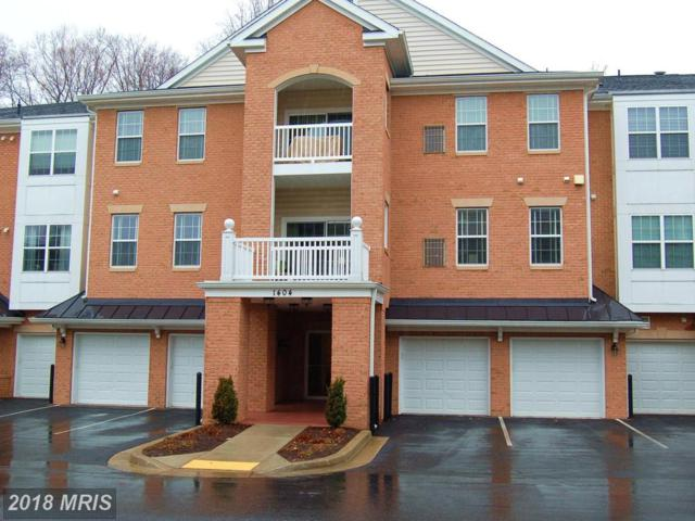 1404 Wigeon Way #203, Gambrills, MD 21054 (#AA10151202) :: The Riffle Group of Keller Williams Select Realtors