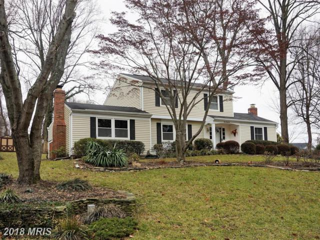 142 Tall Tree Trail, Arnold, MD 21012 (#AA10152179) :: SURE Sales Group