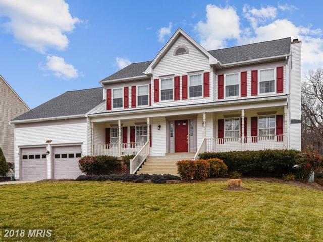 5319 Sweetwater Drive, West River, MD 20778 (#AA10153554) :: The Gus Anthony Team
