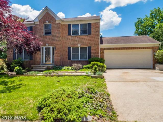 1021 Summer Hill Drive, Odenton, MD 21113 (#AA10154937) :: The Riffle Group of Keller Williams Select Realtors