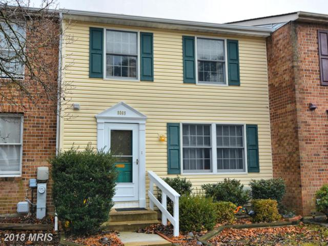 8069 Croydon Way, Pasadena, MD 21122 (#AA10158413) :: The Riffle Group of Keller Williams Select Realtors