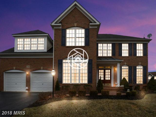 768 Seneca Drive, Odenton, MD 21113 (#AA10159087) :: The Riffle Group of Keller Williams Select Realtors
