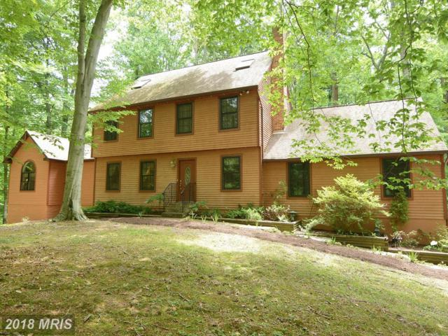 5221 Cottonwood Drive, Lothian, MD 20711 (#AA10162283) :: Gail Nyman Group
