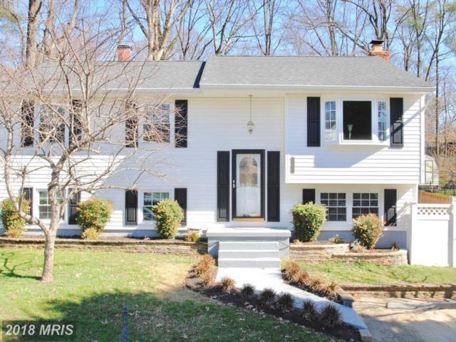 1179 Green Holly Drive, Annapolis, MD 21409 (#AA10168782) :: CR of Maryland