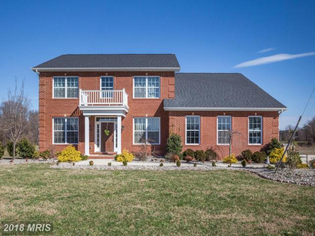 5001 Cottontail Way, Lothian, MD 20711 (#AA10170279) :: Gail Nyman Group
