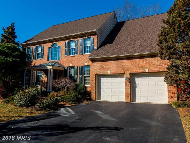 2816 Durmont Court, Annapolis, MD 21401 (#AA10170431) :: SURE Sales Group