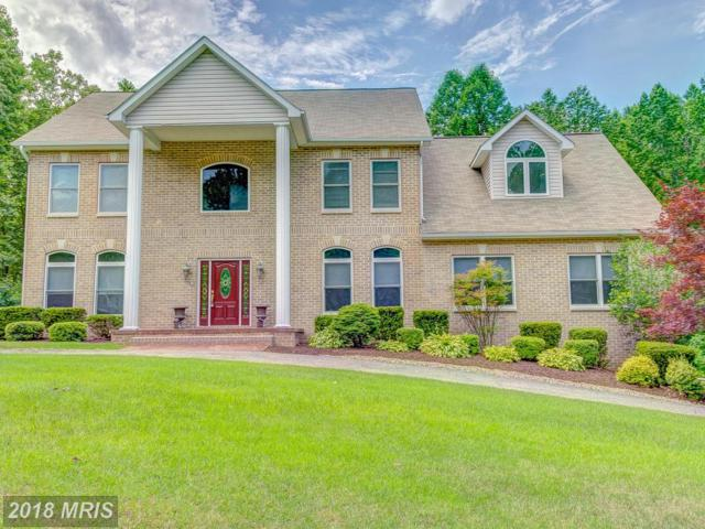 6402 Woodside View Drive, Dunkirk, MD 20754 (#AA10173446) :: Gail Nyman Group