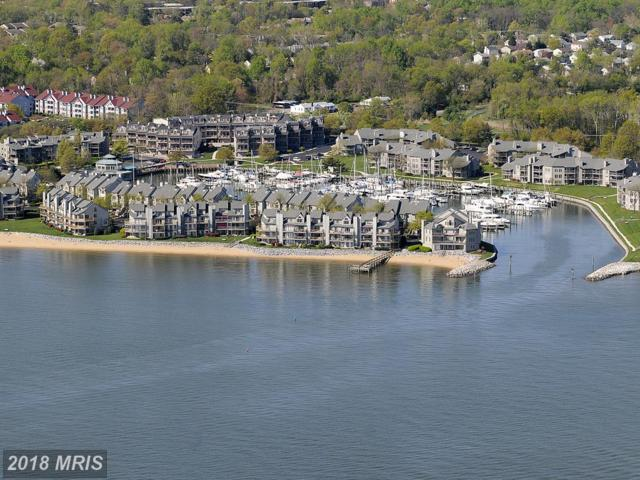 2014 Quay Village Court #101, Annapolis, MD 21403 (#AA10175025) :: Dart Homes