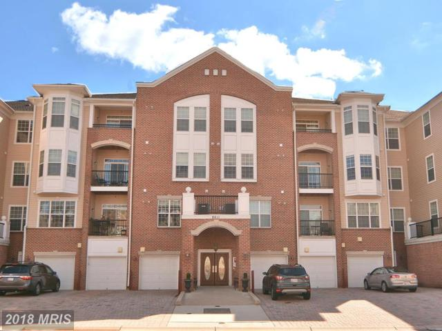 8611 Wintergreen Court #208, Odenton, MD 21113 (#AA10175457) :: Lucido Agency