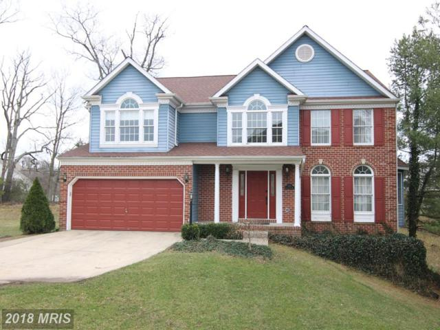 809 Black Cherry Way, Odenton, MD 21113 (#AA10177857) :: Lucido Agency