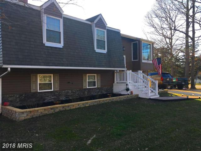 1201 Holmewood Drive, Pasadena, MD 21122 (#AA10181512) :: The Speicher Group of Long & Foster Real Estate