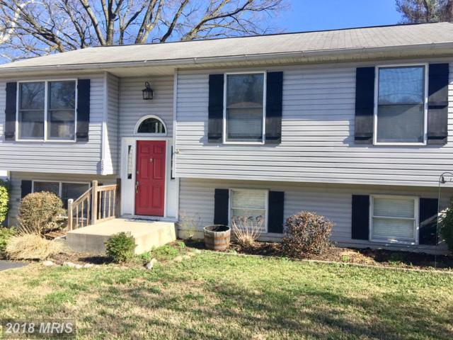 1287 Cape St Claire Road, Annapolis, MD 21409 (#AA10184156) :: The Speicher Group of Long & Foster Real Estate