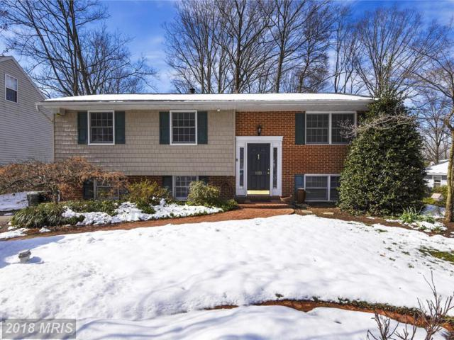 1133 Ramblewood Drive, Annapolis, MD 21409 (#AA10186165) :: Bob Lucido Team of Keller Williams Integrity