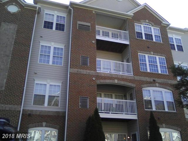 2602 Clarion Court #203, Odenton, MD 21113 (#AA10188536) :: Dart Homes