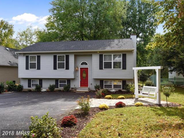 301 Woodlawn Avenue, Annapolis, MD 21401 (#AA10194385) :: Keller Williams Pat Hiban Real Estate Group