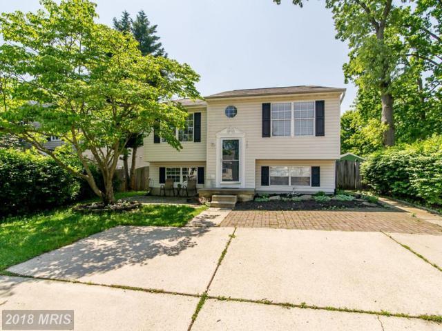 767 211TH Street, Pasadena, MD 21122 (#AA10197566) :: Keller Williams Pat Hiban Real Estate Group