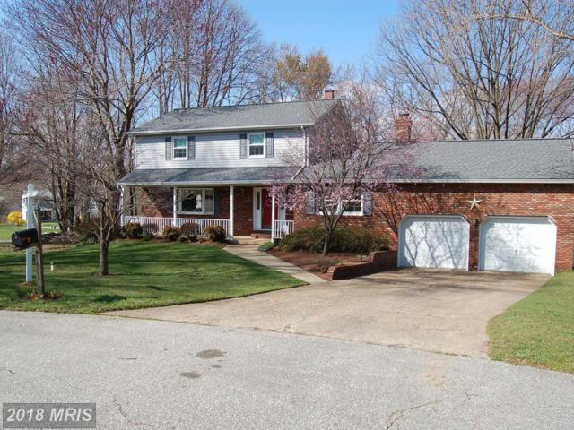 8377 Albacore Court, Pasadena, MD 21122 (#AA10200219) :: Advance Realty Bel Air, Inc