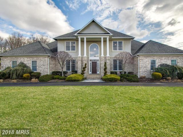 903 Saint Michael Drive, Gambrills, MD 21054 (#AA10205277) :: Maryland Residential Team