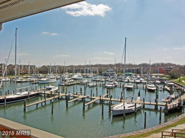 7014 Channel Village Court #202, Annapolis, MD 21403 (#AA10205798) :: Dart Homes