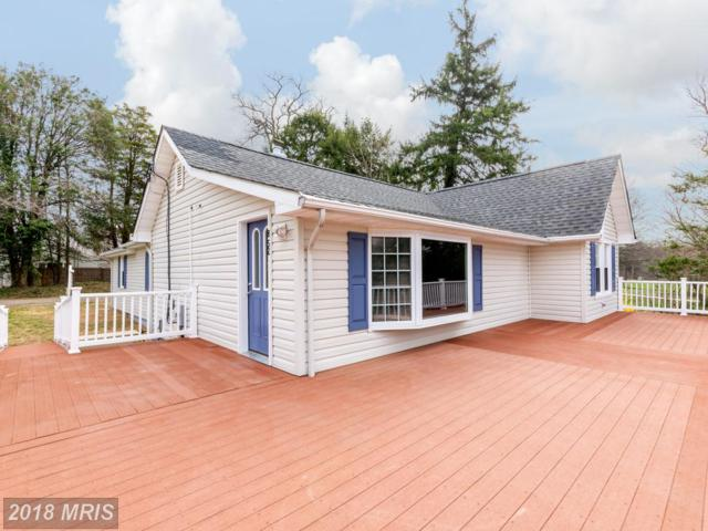 852 Maple Road, Gambrills, MD 21054 (#AA10207137) :: Maryland Residential Team