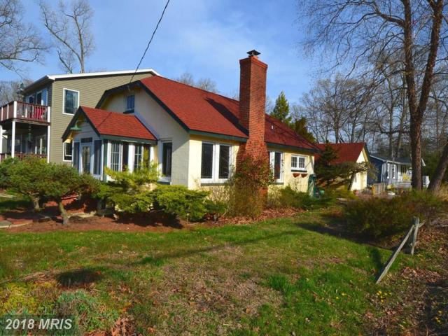 1234 Pine Avenue, Shady Side, MD 20764 (#AA10208404) :: RE/MAX Executives