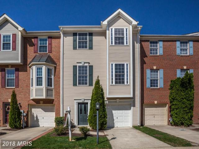 2507 Cheyenne Drive, Gambrills, MD 21054 (#AA10216202) :: Wilson Realty Group