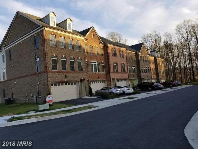 7531 Pelham Way, Hanover, MD 21076 (#AA10219379) :: Circadian Realty Group