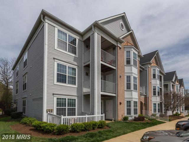 2001 Phillips Terrace #6, Annapolis, MD 21401 (#AA10220487) :: ExecuHome Realty