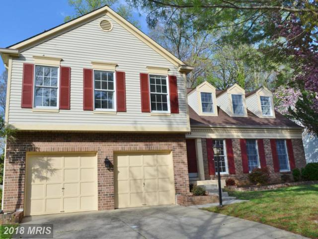 220 Autumn Chase Drive, Annapolis, MD 21401 (#AA10223331) :: Bob Lucido Team of Keller Williams Integrity