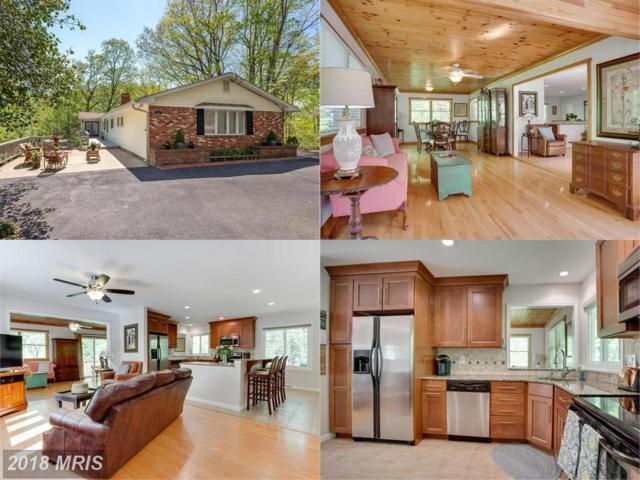 773 Rolling View Drive, Annapolis, MD 21409 (#AA10234292) :: Advance Realty Bel Air, Inc
