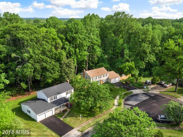 1706 Spring Green Avenue, Crofton, MD 21114 (#AA10238032) :: The Sebeck Team of RE/MAX Preferred