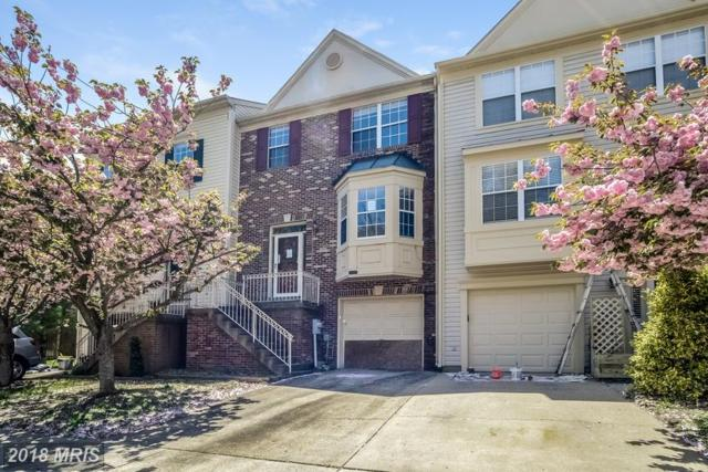 2559 Windy Oak Court, Crofton, MD 21114 (#AA10238993) :: The Withrow Group at Long & Foster